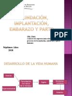 Fecundación e implantación
