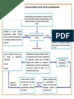 MAPA CONCEPTUAL CIRCULAR EXTERNA N.docx
