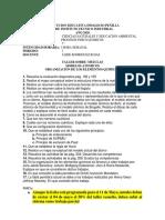 (2020)(20201072)(198)(607) TALLER GRADO 7
