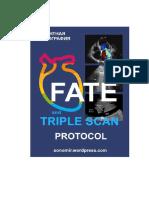 triple-scan.pdf