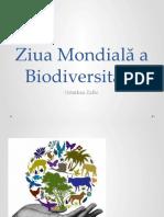ziua_mondiala_a_biodiversitatii_vg