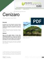Cenízaro (Samanea saman (Jacq) Merril.).pdf