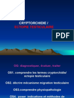 cryptorchidie
