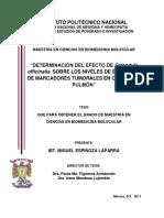 TESIS cancer de pulmon y tratamiento con calenula 16052020