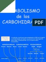 Carbohidratos-glucolisis y fermentaciones