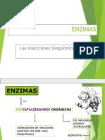 enzimas-profesor-jano modif