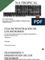 5. Enfermedades infecciosas- virus