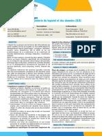 PRSIN5AB-Parcours_type_Ingenierie_du_logiciel_et_des_donnees_ILD