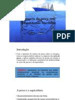 Impacto da pesca nos Ecossistemas Marinhos