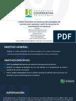 TRABAJO DE GRADO LAURA Y JEFFERSON (1)