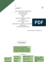 Analisis de La Practica Docente Trabajo Y Organizadores