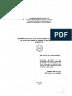 Dissert_Garcia_CileneC.pdf