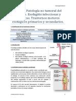 Tema 1 - Patología no tumoral del esófago