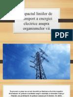Impactul liniilor de transport a energiei electrice asupra