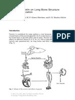 Efectos de la parotina en huesos largos