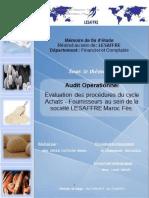 rapportdestageauditoprationnel1-151027162509-lva1-app6891-converted.docx