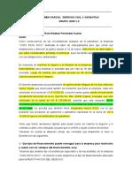 EXAMEN PARCIAL  DERECHO CIVIL X GARANTIAS DER11-2