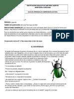 GUIAS DE COMP. LECT. 5° DEL 6 AL 27 DE MAYO DE 2020-convertido (1) (1).pdf