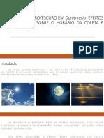 PREFERÊNCIA CLARO_ESCURO EM Danio rerio.pdf