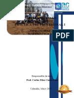1ra Guía de practica Pre Profesional I- Matematica V