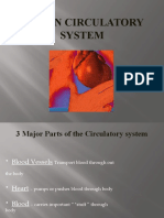 Blood & circulation.pptx