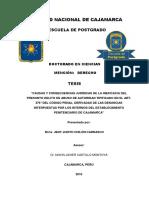 Tesis Doctorado - Jeny Judith Chilón Carrasco