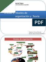 Organizacion celular-convertido.pptx