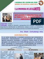 1 CLASE AGROINDUSTRIA E INDUSTRIAS ALIM-S.pdf