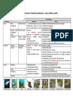 u5.l4.vertebrate-pec899ti-amfibieni-reptile (1).pdf