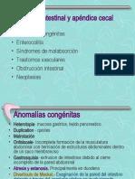 Tema 9 PATOLOGIA DIGESTIVA II.ppt