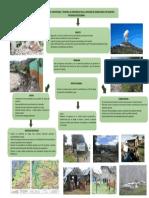 ARBOL DE PROBLEMAS (1).pptx