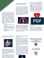 triptico del EL CORAZÓN educacion fisica.docx