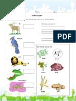 animal-diets.pdf