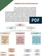 PROBLEMÁTICAS AMBIENTALES ANTROPOGÉNICAS.pptx