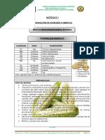 ficha 7..pdf