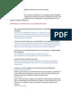 Seguridad industrial y prevención de riesgos.pdf