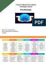 Linea del tiempo-psicofisiologia