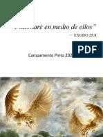 Ricardo Castro - Pinto 2020
