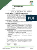 Resumen Ejecutivo (2020)