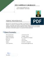 HOJA DE VIDA ENRIQUE CAMPILLO.docx