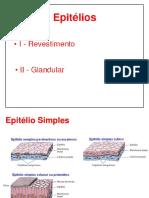 Aula 02 Epitélios_2 (1).pdf