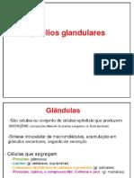 Aula 03 Epitélios_3.pdf