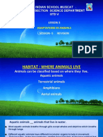 Adaptation in animals-ppt 2