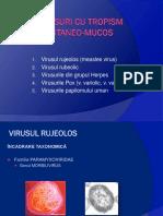 Curs_7+8_Virusologie_Anul_II_Medicina_Seria A+B+C+D