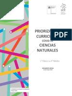 Ciencias Priorización Curricular
