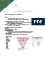 Taxonomia y Clasificacion de bacterias