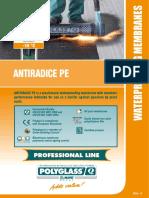 Antiradice PE.pdf
