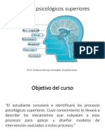 Procesos_psicologicos_superiores.pdf