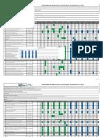 Cronograma Implementación PESV