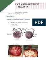Placenta Embriología final (1).pdf